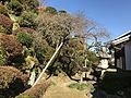 Garden of Former Residence of Nabeshima Family in Kojirokuji Area 9.jpg