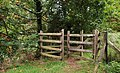 Gate, Minnowburn near Belfast - geograph.org.uk - 1535302.jpg