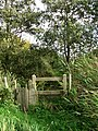 Gate on footpath - geograph.org.uk - 599436.jpg