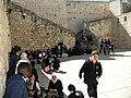 Gethsemane Jerusalem3074.JPG