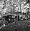 Gietijzeren brug - Amsterdam - 20015494 - RCE.jpg