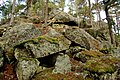 Gjellberget - panoramio.jpg