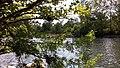 Gorges de l'Ardèche entre Lanas et Balazuc 06.jpg