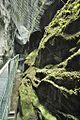 Gorges de la Fou, France 10.jpg