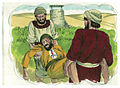 Gospel of Luke Chapter 20-14 (Bible Illustrations by Sweet Media).jpg