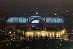 Grand Palais Paris 01 2017 1438.jpg