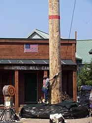 Great Alaskan Lumberjack speed climb 2.jpg