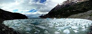 Grey Glacier - Icebergs calved by the glacier.