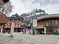 Grindelwald 2.jpg
