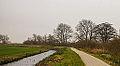 Groep bomen aan fietspad om Langweerderwielen (Langwarder Wielen). Oostkant 04.jpg