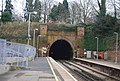 Grove Hill Tunnel - geograph.org.uk - 1104700.jpg