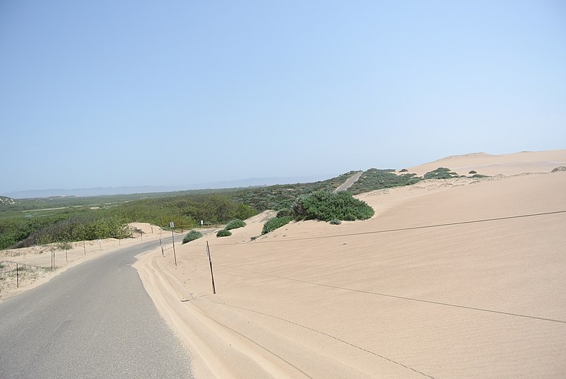 Guadalupe Dunes County Park road.JPG