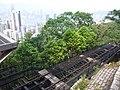 HK 香港 VP 維多利亞山頂 Victoria Peak Tram 白加道 Barker Road stop April 2020 SSG 09.jpg