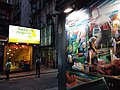 HK WC 灣仔 Wan Chai 石水渠街 Stone Nullah Lane Chi Residences wall picture Graffiti night March 2019 SSG 05.jpg