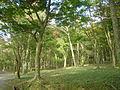 Hakone Ashinoko lake dsc05426.jpg