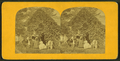 Happy family, from Robert N. Dennis collection of stereoscopic views.png