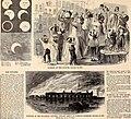 Harper's weekly (1865) (14765206192).jpg