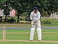 Hatfield Heath CC v. Thorley CC on Hatfield Heath village green, Essex, England 11.jpg