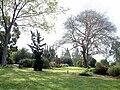 Havat Hanoi arboretum at Ruppin College 1.jpg