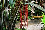 Aloha Discovery Island Tours Kauai Ephraim