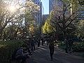 Hibiya Park - various - April 13 2019 sunny day 14 54 09 277000.jpeg