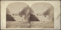 High Falls, Trenton, New York. From the porch of the rural retreat, by Stacy, G. (George).png
