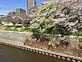 Hikiji River Shonandai.jpg