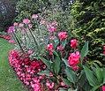 Hillwood Gardens in July (19613974938).jpg