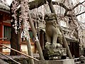 Himuro Shrine - panoramio.jpg