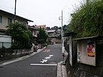 Hirai, Hinode, Nishitama District, Tokyo 190-0182, Japan - panoramio (3).jpg