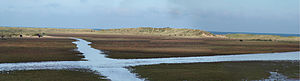 Holkham - Holkham Beach in autumn