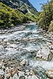 Hollyford River NZ 08.jpg