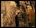 Horolezení pod Belvederem - panoramio.jpg
