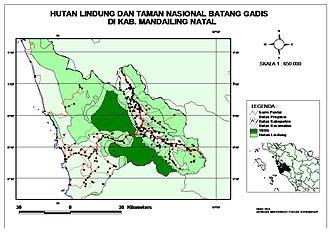 Mandailing Natal Regency - Image: Hutan Lindung dan Taman Nasional Batang Gadis