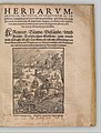 I) Herbarum, Arborum, Fructium, Frumentorum, c. 1540 ... II) De Speciali quarundam plantarum, Frankfurt- Egenolff 1552 MET DP327883.jpg