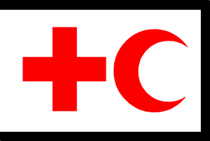 Kengir uprising - Image: IFRC flag used in Kengir Uprising