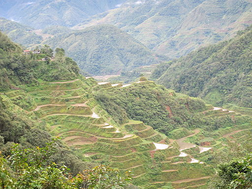 IfugaoTerraces, Philippines
