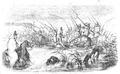 Illustrirte Zeitung (1843) 09 133 3 Truppenmarsch durch einen Bergstrom.PNG
