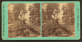 In the Grounds. At Sir Hugh Allan's summer residence, Lake Memphremagog, by Clifford, D. A., d. 1889.png