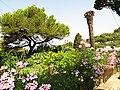 Isola di Capri - panoramio (4).jpg