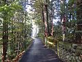 Iwakuraji, Tateyama, Nakaniikawa District, Toyama Prefecture 930-1368, Japan - panoramio (14).jpg