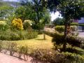 Jardín Libertad, Colima.png