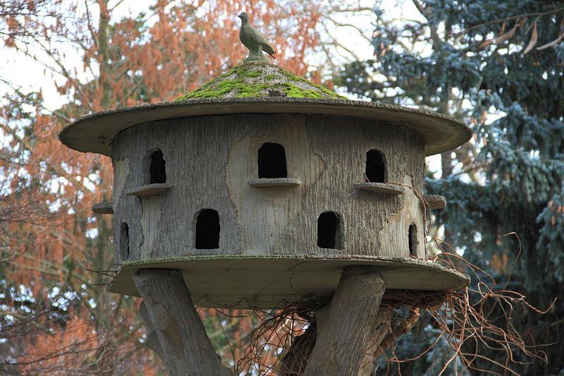 File jardin des plantes toulouse 06 jpg wikimedia commons - Toulouse jardin des plantes ...