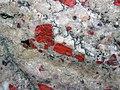 Jasper pebbles in quartzite (Lorrain Formation, Paleoproterozoic, ~2.3 Ga; Ottertail Lake Northeast roadcut, near Bruce Mines, Ontario, Canada) 18 (46793020155).jpg