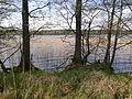 Jezioro Trzemeszno - panoramio - geo573.jpg