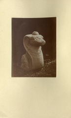KITLV 1405909 - Isidore van Kinsbergen - Naga sculpture at the residency in Kediri - Around 1866-12-1867-01.tif