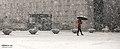KOCIS Korea National Museum Snowfall 02 (11580695744).jpg