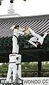 KOCIS Korea Taekwondo Namsan 13 (7628124844).jpg
