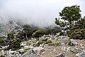 Katharo plateau 10.jpg