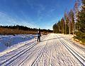 Keljo-Ladunmaja ski track.jpg